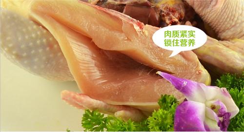 中华宫廷黄鸡