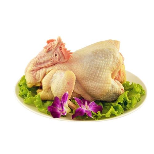 中华宫廷黄鸡,让您吃出50年前笨鸡的味道!!!